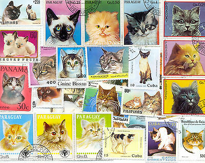 Cats -collection of 300 all different mainly domestic-medium/large-good selectio