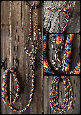 BNWT Horse Size Rainbow Rope Halter With 8ft Lead ~ Horse Gear Tack Horsemanship