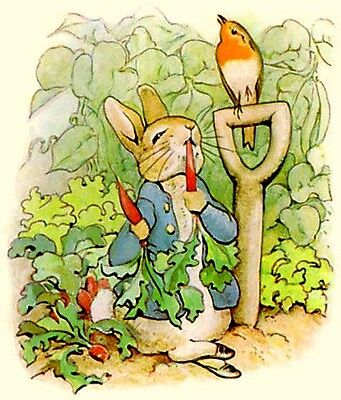 "Peter Rabbit Latch Hook CHART ONLY 24"" x 28""Inches (see below)"