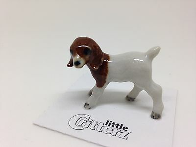"Little Critterz - LC835 ""Chipotle"" Boer Goat Kid"