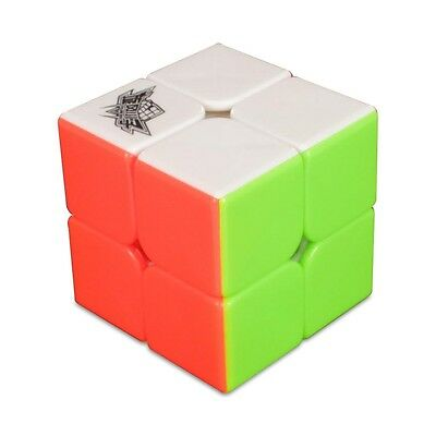 Cyclone Boys FeiChang 2x2 Twisty Magic Puzzle Speed Cube Toy Kids Mind Game