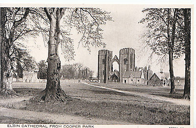 Scotland Postcard - Elgin Cathedral from Cooper Park    A3173