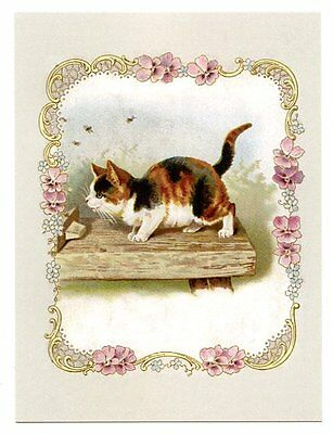 modern cat postcard Maguire curious calico cat watches bees floral pansy border