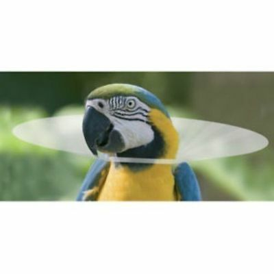Cage Bird Protective Cone Collar Injury Anti Feather Plucking Parrot Elizabethan