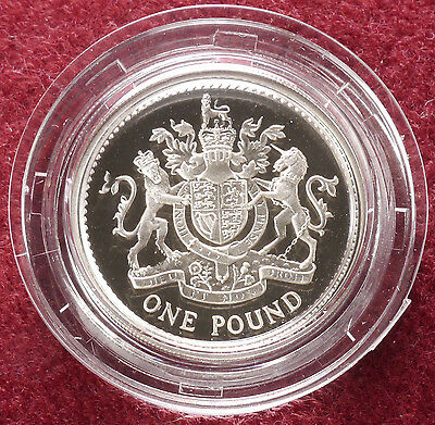 GB Silver Proof £1 One Pound 1993 Cased (D1101)