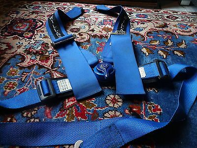 Willans - Club 6 Single Seater - Blue 4 Point Harness