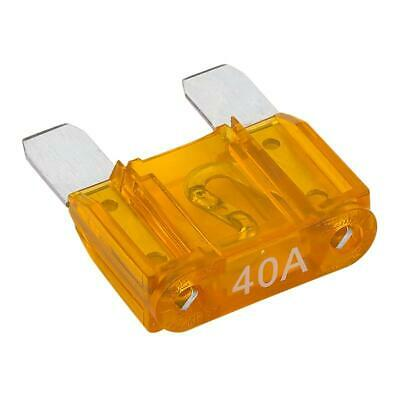 cheap! NEW 100AMP maxi blade fuse car tractor truck lorry bus camper van 4x4