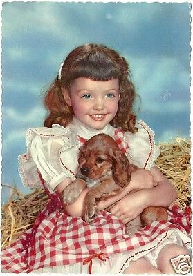 Original Vintage 1950s-60s Large German PC- Dog- Young Girl with Pet Spaniel