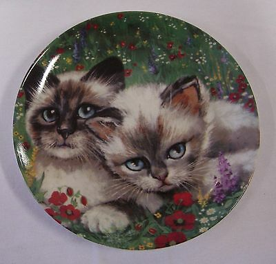 Cats Collection 'country Cat' Formalities Plate