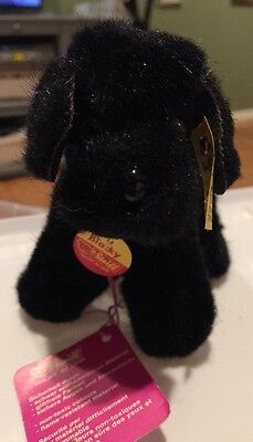 Vintage Steiff Blacky The Poodle With Tags