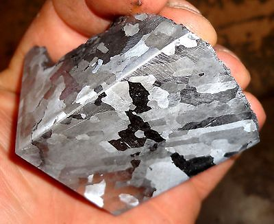 Beautiful 640 Gm. Etched Campo Del Cielo Meteorite Quad Cut
