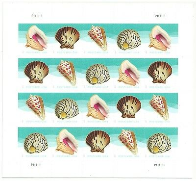 Sea Shells 2017 Forever Post Card rate stamps Pane 20 MNH No Scott yet