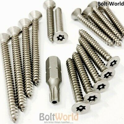 Countersunk Csk Torx 6 Lobe Pin Self Tapping Security Screws A2 Stainless Steel