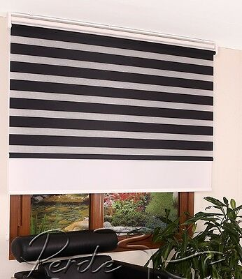 New ! Front Zebra + Rear Shade ''2 in 1'' Roller Blinds Window Shade Double Mech