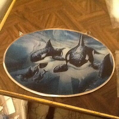 Whale Wall Picture Glass Plastic Lot 22A