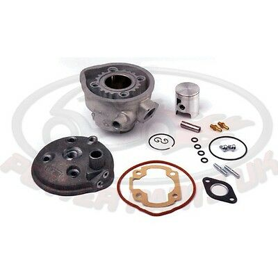Airsal Cylinder Kit For BENELLI 491 SP 50 L/c