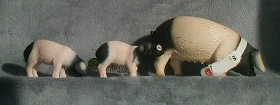 Schleich Swabian-Hall Pig Family Sow and two pigletts  #13612 #13635 #13636