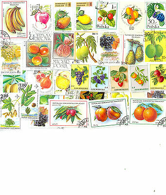 Fruits/Legumes 100 all different collection large/medium colourful lot