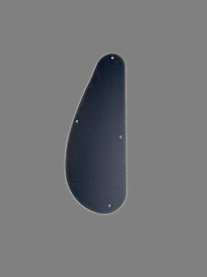 Guitar And Bass Rear Control Cover Black ABS