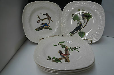 Vintage Alfred Meakin Birds Of America lot of 6 Plates England Audubon Society