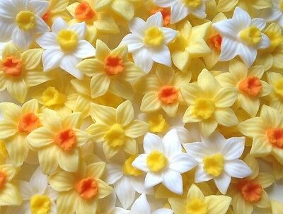 12 Mixed Daffodils Edible Sugar Spring Flowers Easter Cake Topper Decorations
