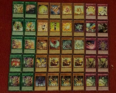 Yu-Gi-Oh Madolche and Bujin Deck - 40 cards complete BONUS 5 cards