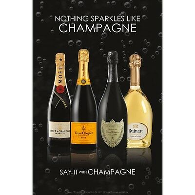 Say It With Champagne Poster. 24 By 36  Moët Veuve Dom Ruin art
