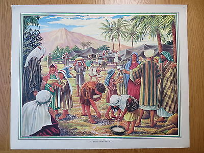 1950'S VINTAGE CLASSROOM POSTER Bread from the Sky Bible Stories Macmillans