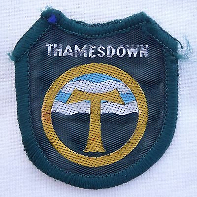 New Vintage Thamesdown District Scout Badge Woven Bound Ref 150