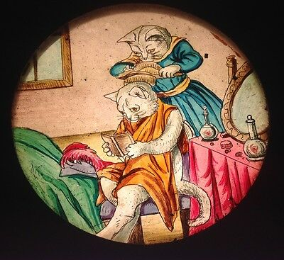 Antique Hand Painted Magic Lantern Slide Wooden Frame - Story Of The Cat (U)