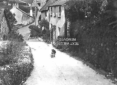 OLD VILLAGE MOSTLY LYNMOUTH & DEVON 1930/40s 1/6th PLATE GLASS NEGATIVE 098