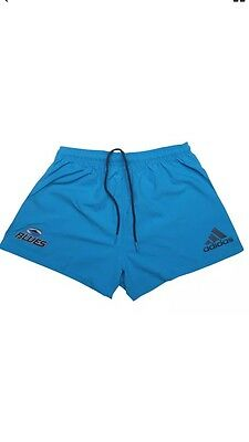 adidas Auckland Blues Rugby Supporters Shorts 2017 *LARGE*
