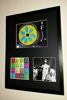 James Greatest Hits Cd Album Display, Manchester Tim Booth Madchester