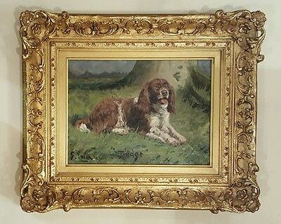 1920s Dog Portrait Springer Spaniel Signed Listed British 20th.Century G Paice