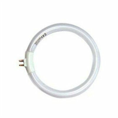 Ampoule circulaire Lampe Daylight ampoule 28 watt 4 broches - Neuf