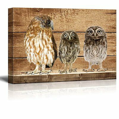 Rustic Canvas Wall Art - Three Owls - Giclee Print Modern Wall Decor - 12x18