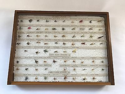 Shop display box  VINTAGE FISHING FLIES 1960s labeled w names  72 in total