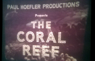 """16mm. """"THE CORAL REEF"""" Color 1967"""