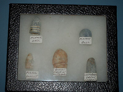 Authentic Civil War  Bullets in a Riker Display Case