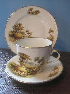 Vintage Alfred Meakin 'The Hayride' country scene Trio, Tea Cup saucer and plate