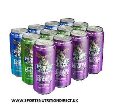 MUSCLE MOOSE JUICE 12 x 500ml Pre Workout Gym Energy Drink BCAAs FREE TRACKED