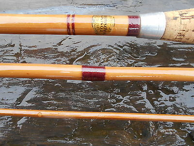 """Rare Tommy Wandsworth Leicester Whole Cane Lightweight Roach Rod 3Pce 10Ft 6"""""""