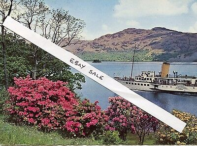 Colour Postcard PS Maid of the Loch approaching Tarbet