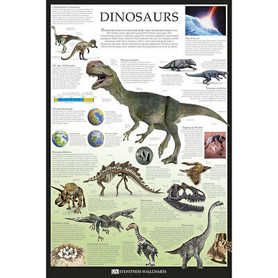 DK - Dinosaurs POSTER 61x91cm NEW * Educational Prehistoric Facts