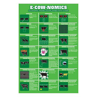 E Cow Nomics POSTER 61x91cm NEW * Economic Models Explained With Cows