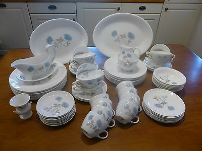 EXCELLENT Wedgwood ICE ROSE 73 piece DINNER/TEA SET for 8 plus EXTRAS