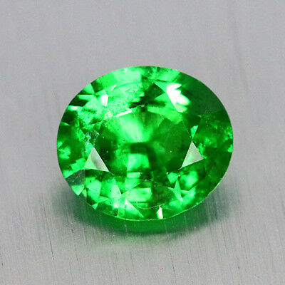 3.05 Ct Finest Hi-End Intense Green Tsavorite_Garnet 100% Natural Genuine Gem !!