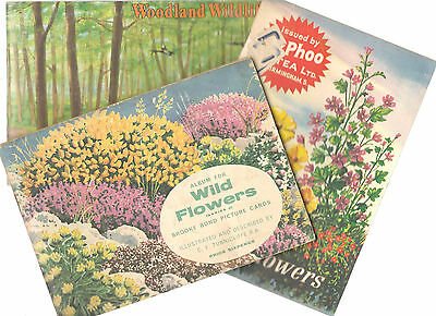 3 Full Albums of Tea Collector's cards-2 Wild Flowers & Woodland Wildlife