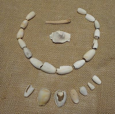 Taino Carved Shells Necklace 900 a.d.