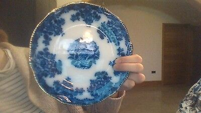 Unusual Blue and White Side Plates with gold rim